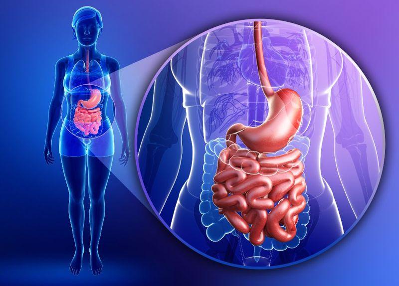 digestion black peppercorns