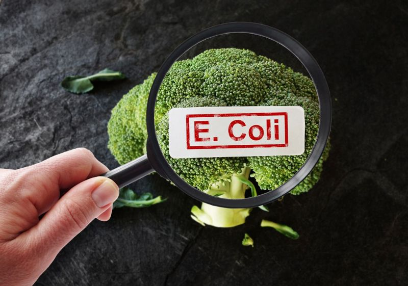 Symptoms of E. Coli Poisoning