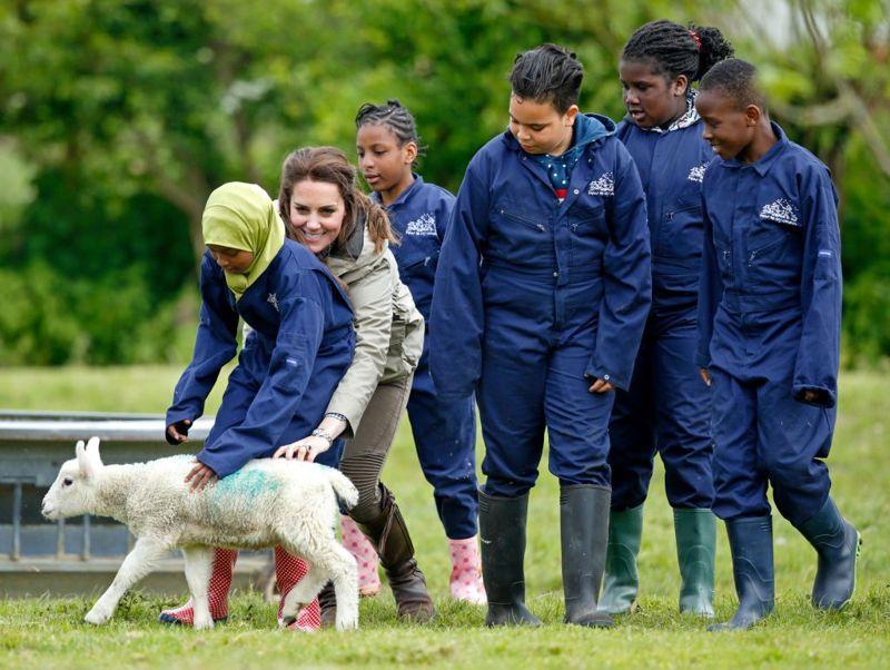 Kate Middleton farm