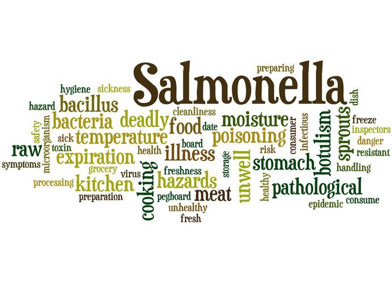 Symptoms of Salmonella