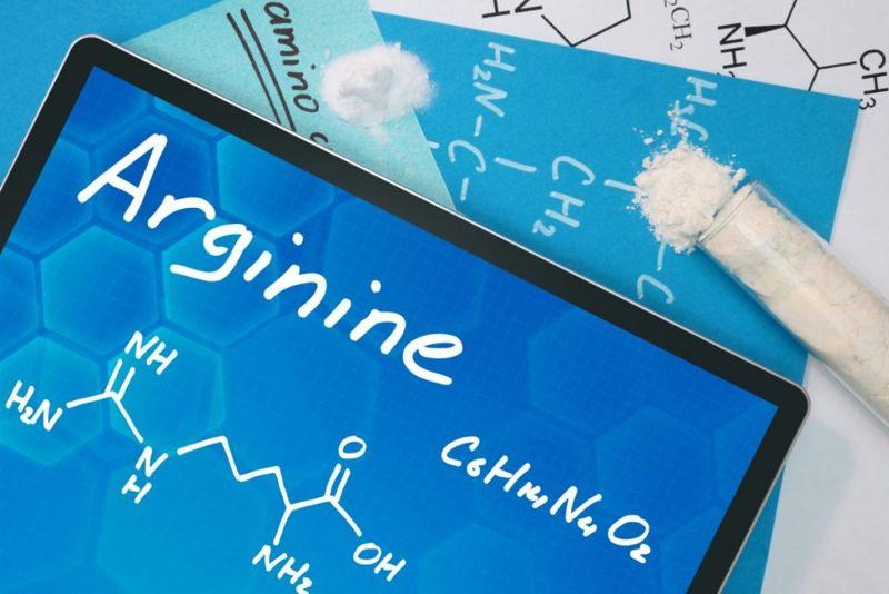 kidney benefits arginine immune healing