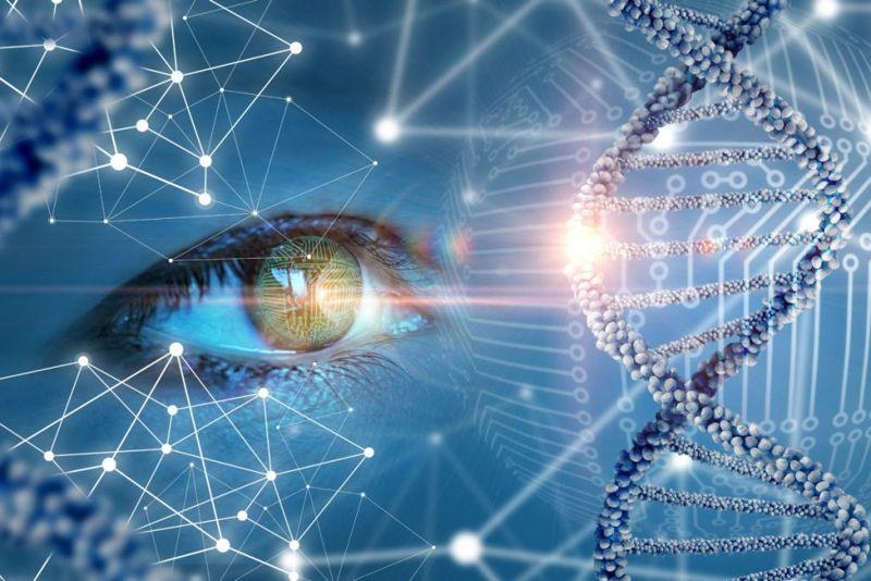 Retinitis pigmentosa eye