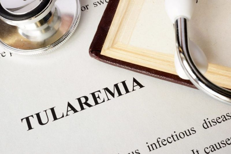 what is Tularemia facts