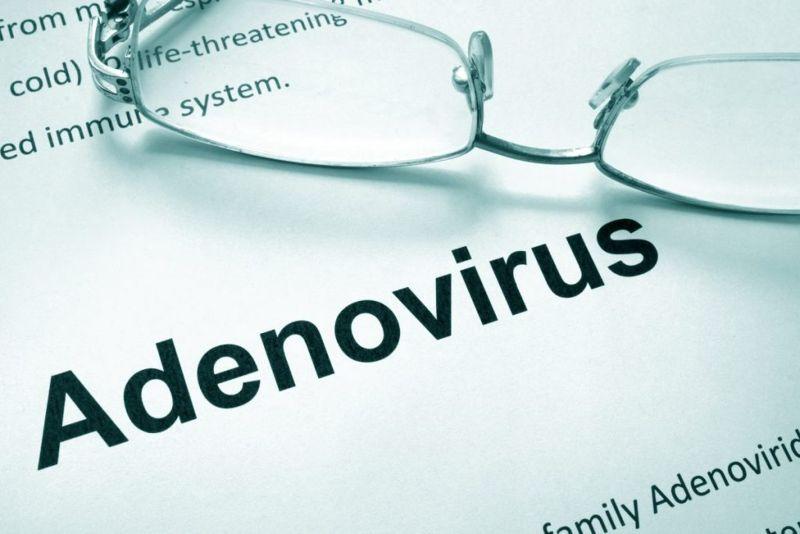 What is adenovirus