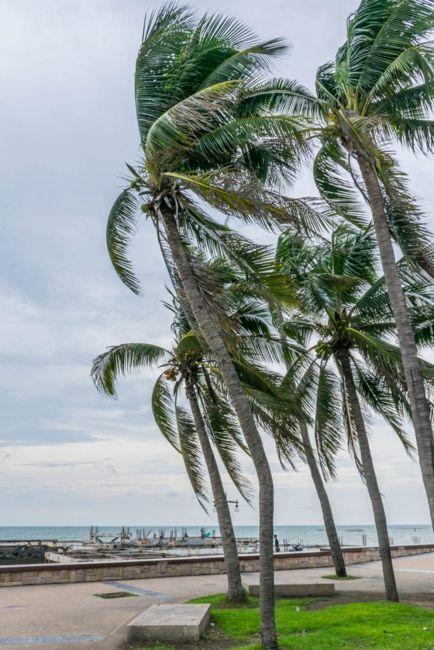why hurricanes happen
