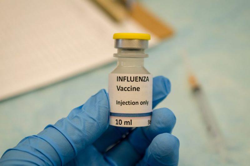 swine Types of Flu Vaccines