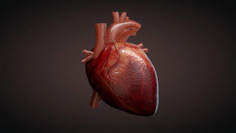 types of tachycardia heart