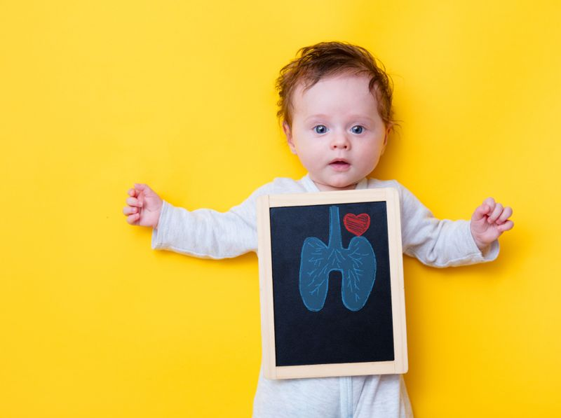 baby lungs