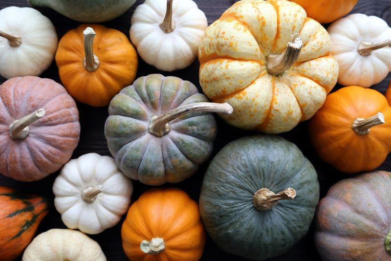 8 Health Benefits of Pumpkin