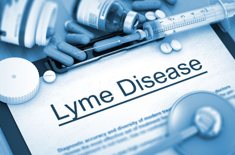 10 Causes, Risks, and Complications of Lyme Disease