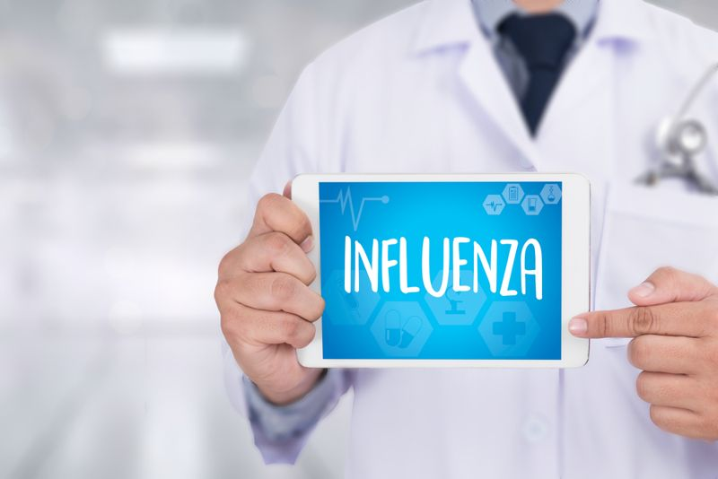 What is Type B Influenza?