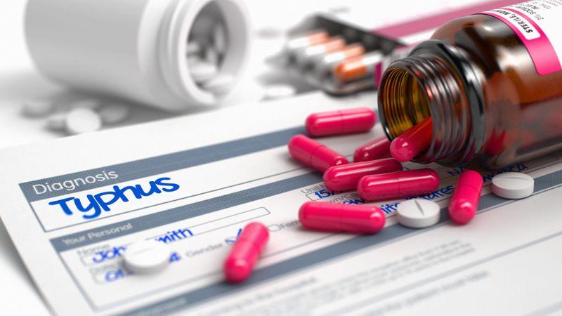 treating typhus