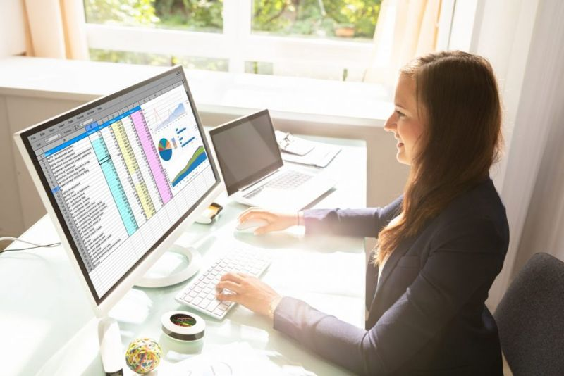 mint Excel