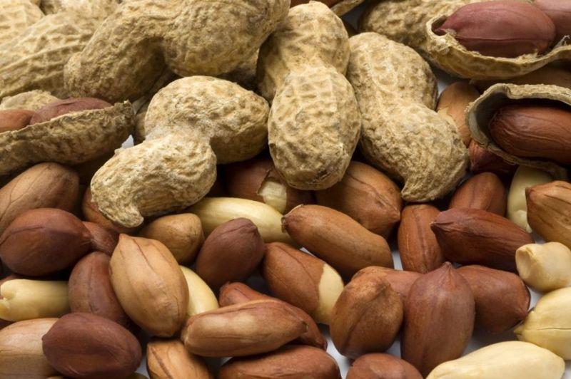 peanut Common food allergies