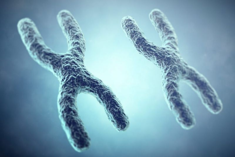 risk lysosomal storage disease