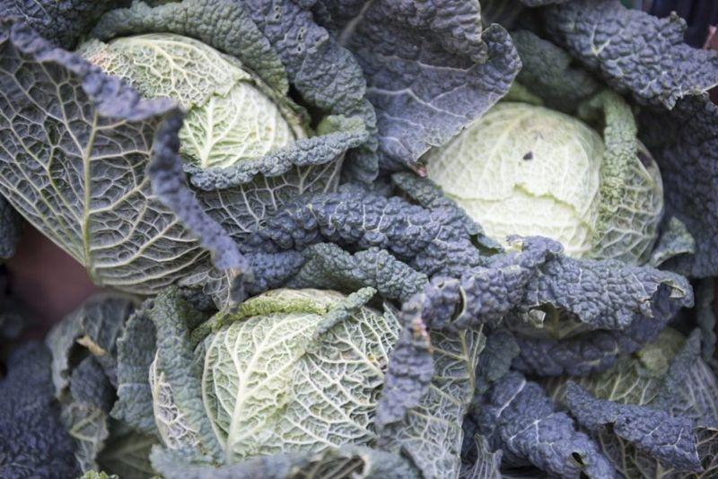 health worst foods for diverticulitis