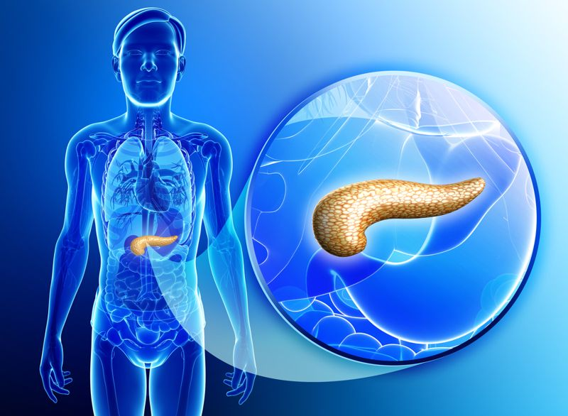 10 Facts About Exocrine Pancreatic Insufficiency