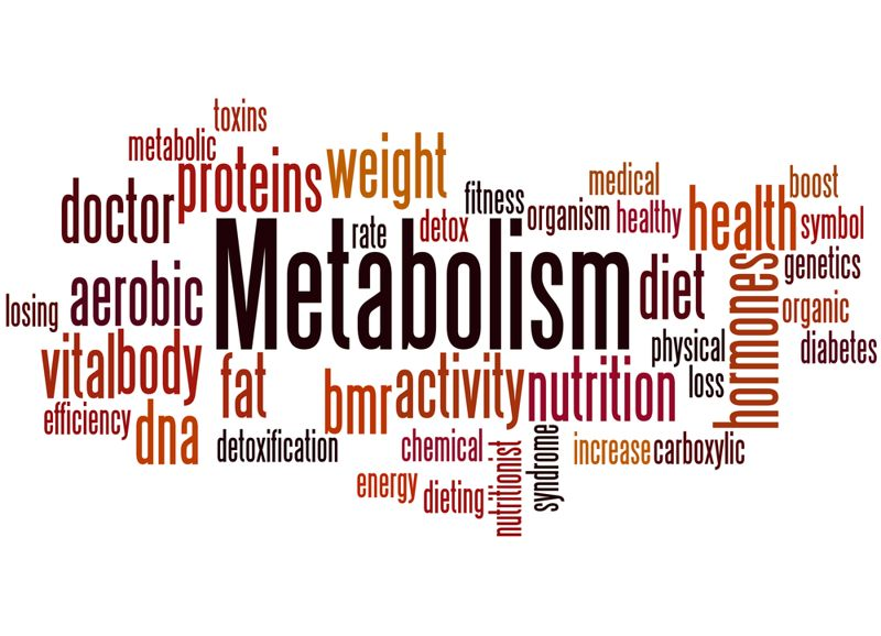 10 Facts about Metabolic Diseases