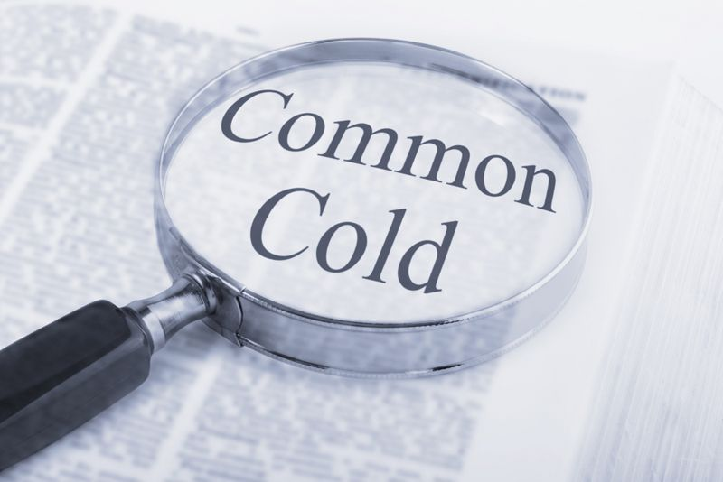 The Causes of the Common Cold