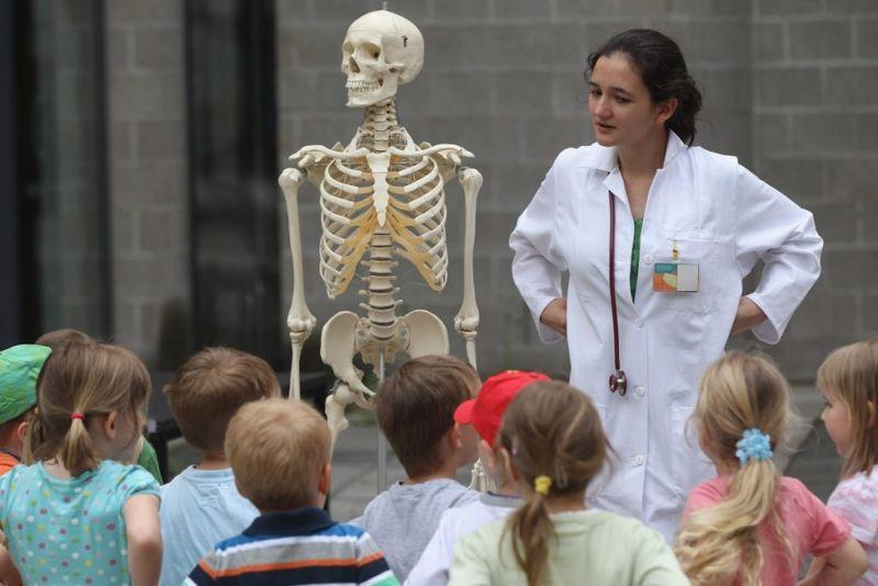 skeletal bone growth