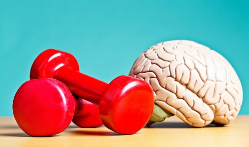 brain with barbells
