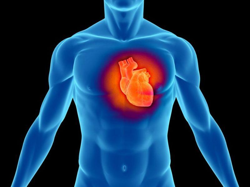 arginine heart erectile dysfunction