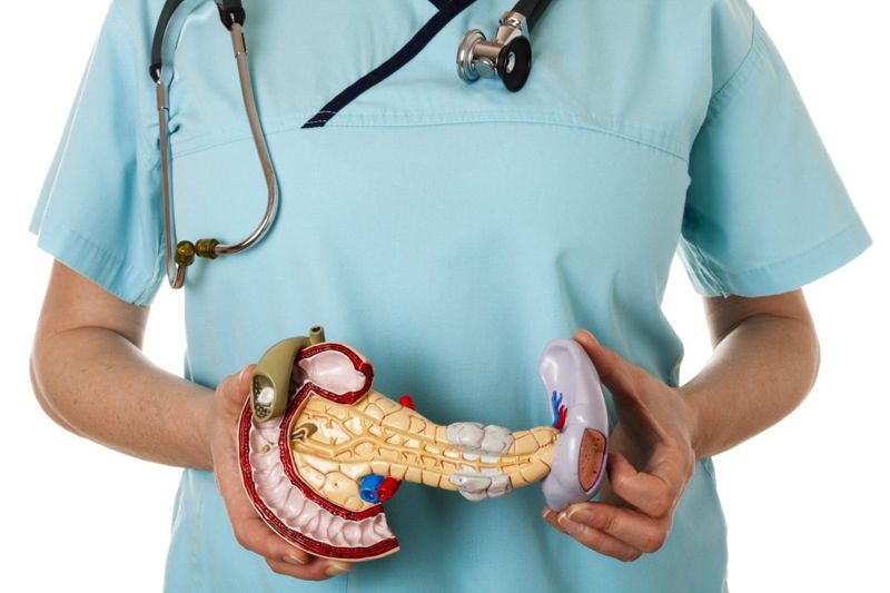 What is the Duodenum?