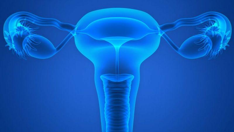 miscarriage salpingitis