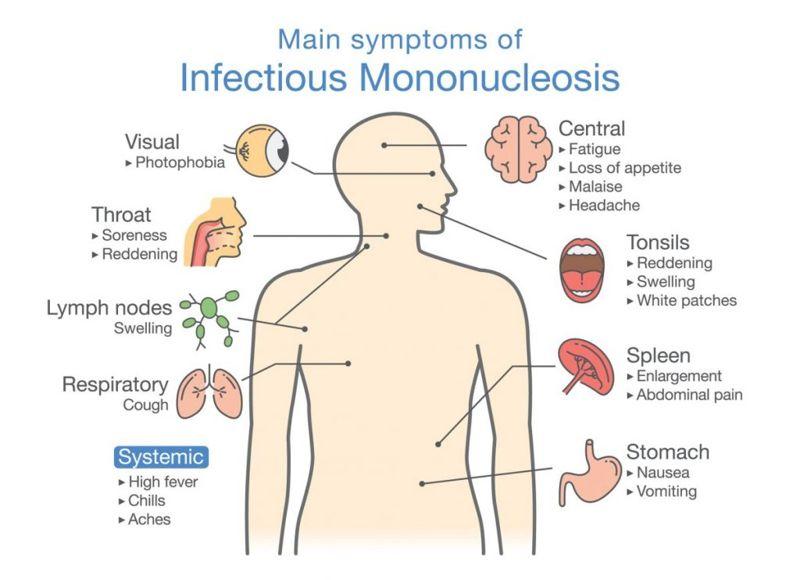 symptoms Spleen pain