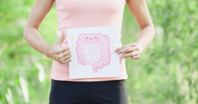 parts of small intestine