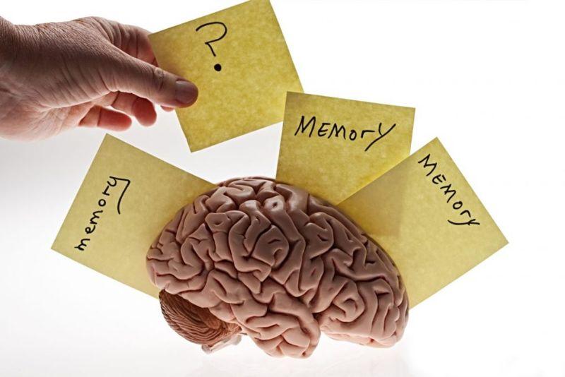 types of memory training