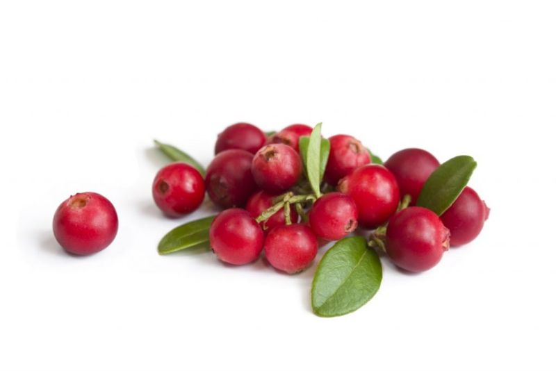 age-related cranberries