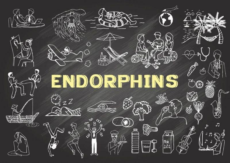 endorphins Neurotransmitters