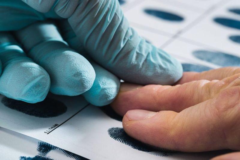 the skin fingerprints