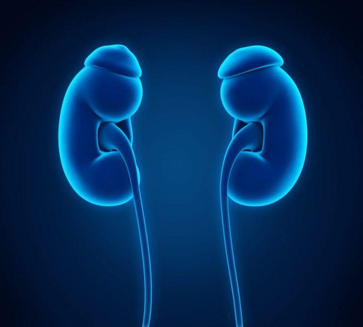 renal insufficiency Hyperphosphatemia