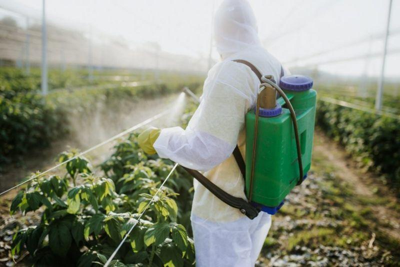 Food-yield crop-yield