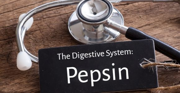 All About Pepsin