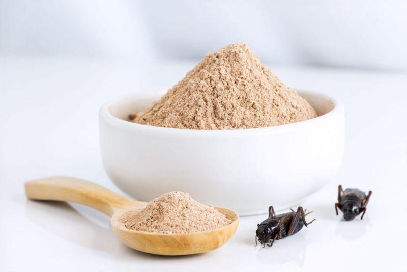 Cricket flour antioxidants