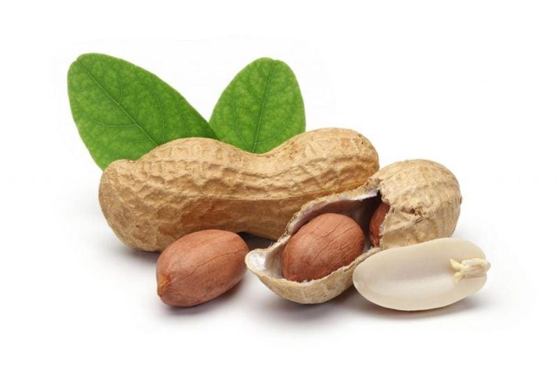 legumes peanuts