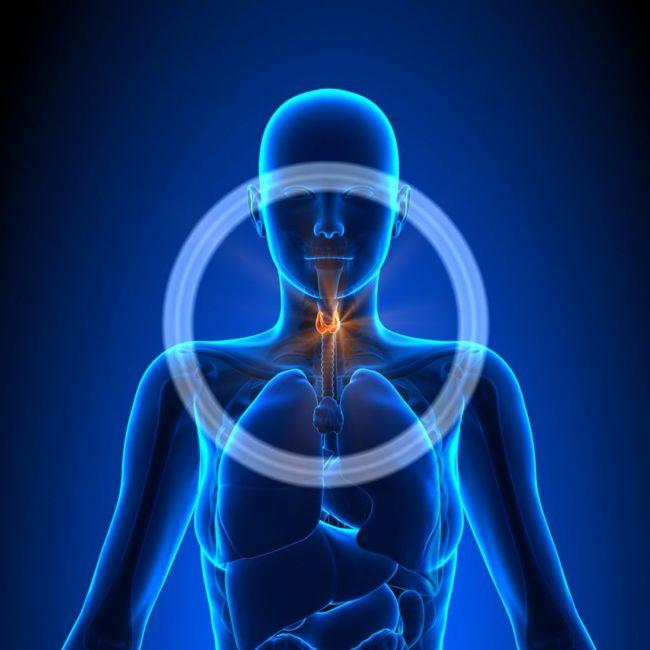 Causes of Hypoparathyroidism