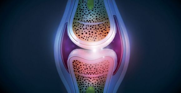 The Purpose of Synovial Fluid