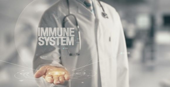 What is the Immune System?