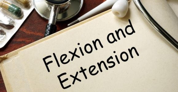 Facts About Flexion and Extension