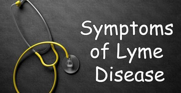10 Symptoms of Lyme Disease