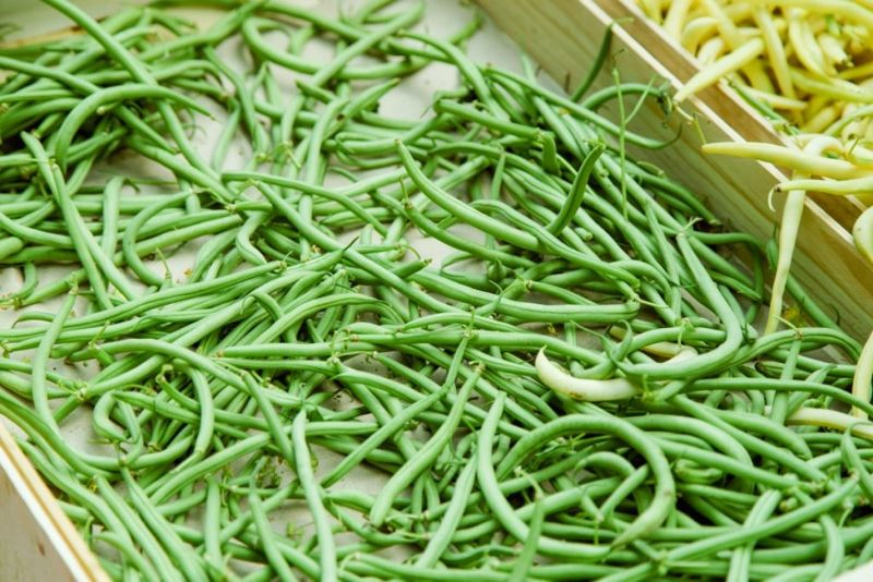 benefits of French green beans