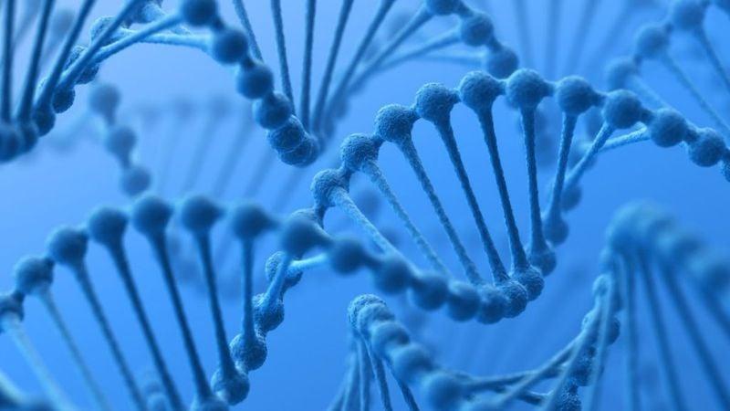 SLC26A4 autosomal recessive gene mutation