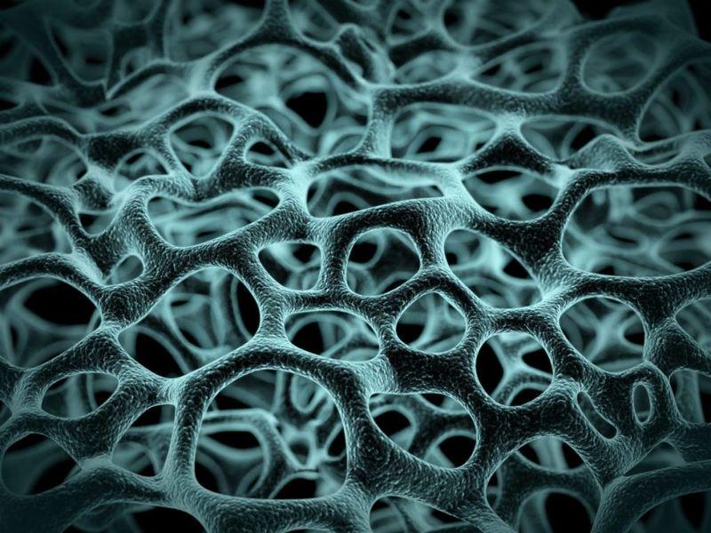 structure Mycobacterium tuberculosis