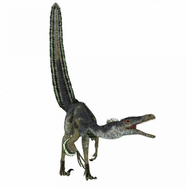 velociraptors and birds
