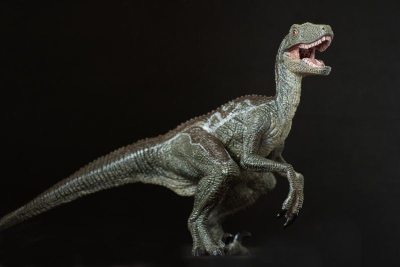 sprinting velociraptors