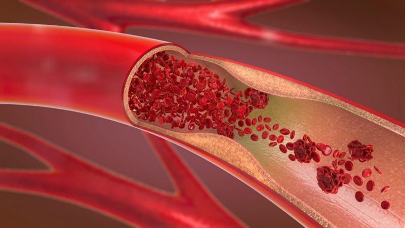 functions of Red blood cells